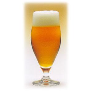 Бокал для пива 310мл SIAM D 6,1см h 16,6см