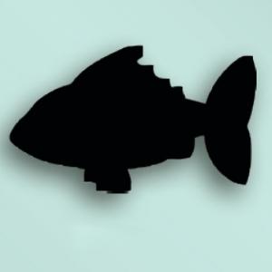Доска-меню РЫБКА L 30см w 49см, цвет черный